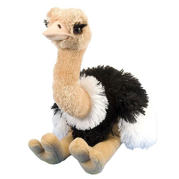 Plüschtier Vogel Strauss von Wild Republic Cuddlekins